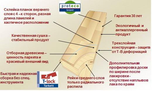 структура паркетной доски