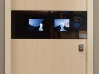 входные металлические двери в квартиру с видеонаблюдением