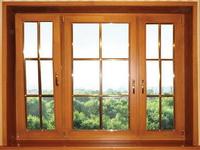 Какие окна ставить
